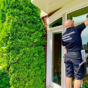Downtown house window cleaning service in New York