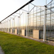 Greenhouse window cleaning service in New York