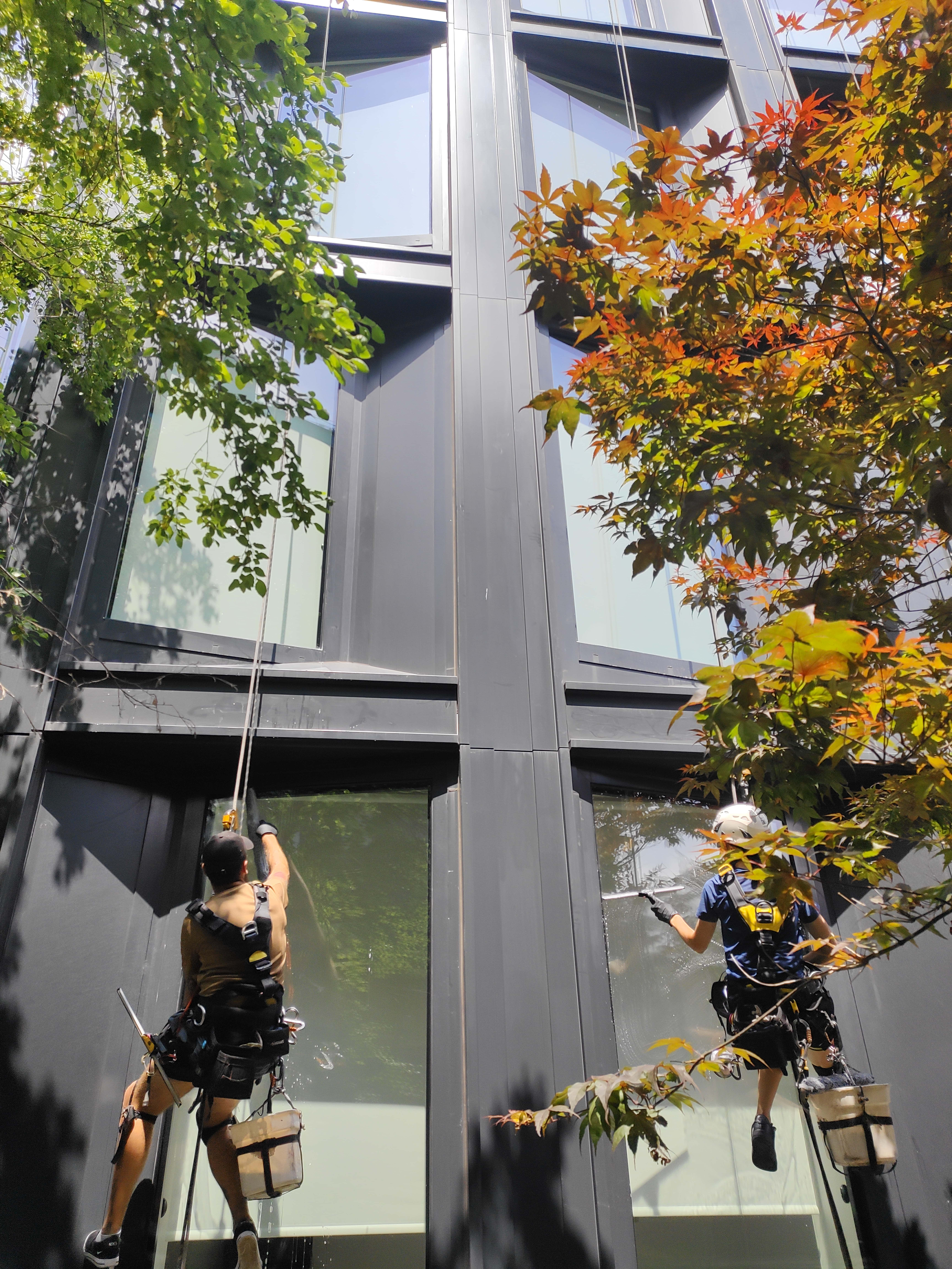 Windows washing in 505 West 19th, New York