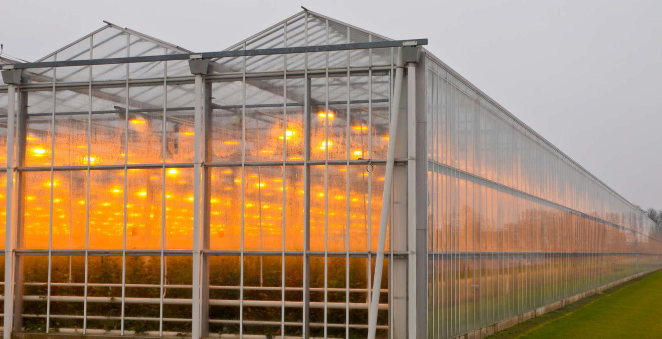 greenhouse window cleaning New Yourk
