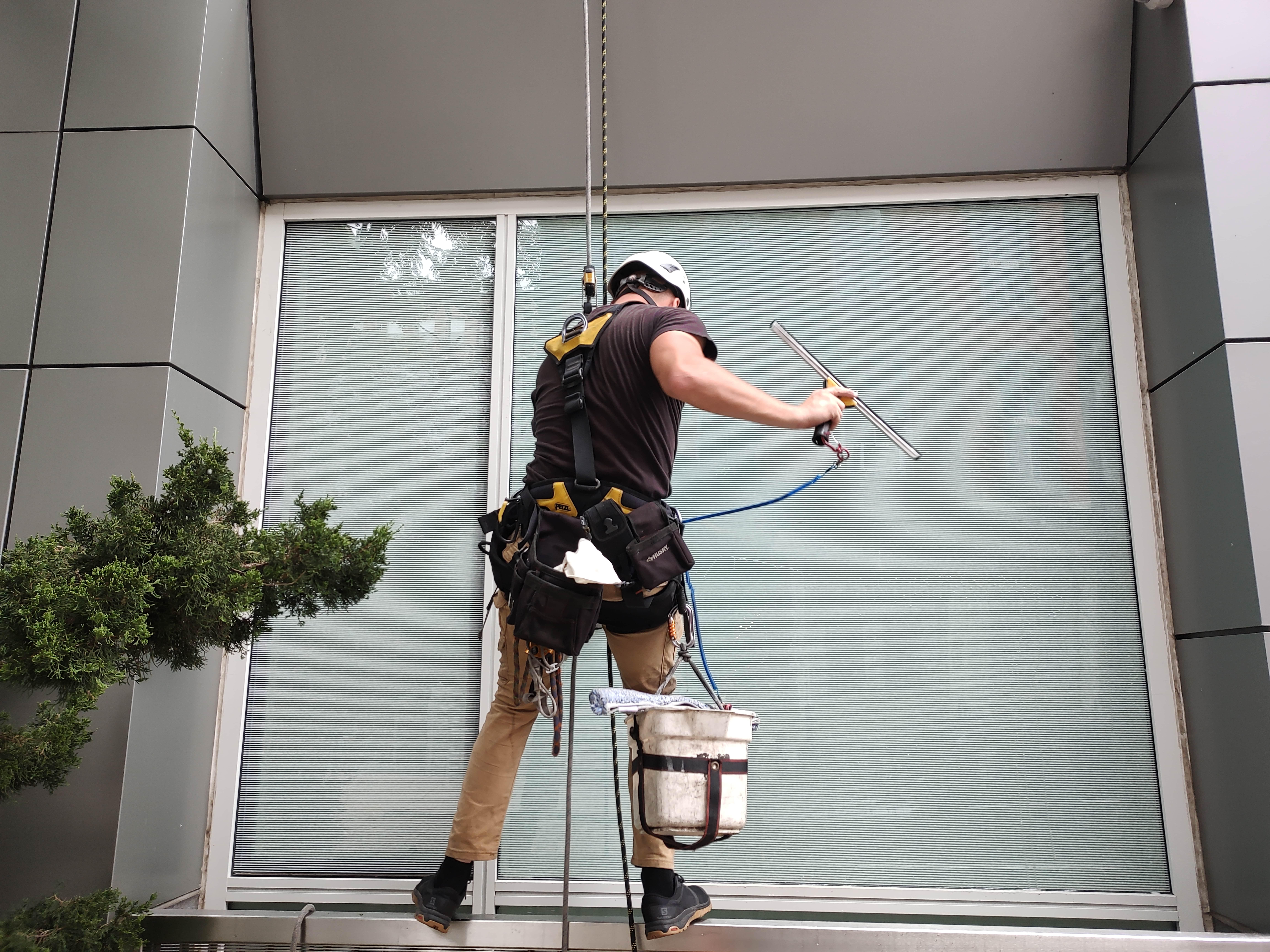 regular window washing services