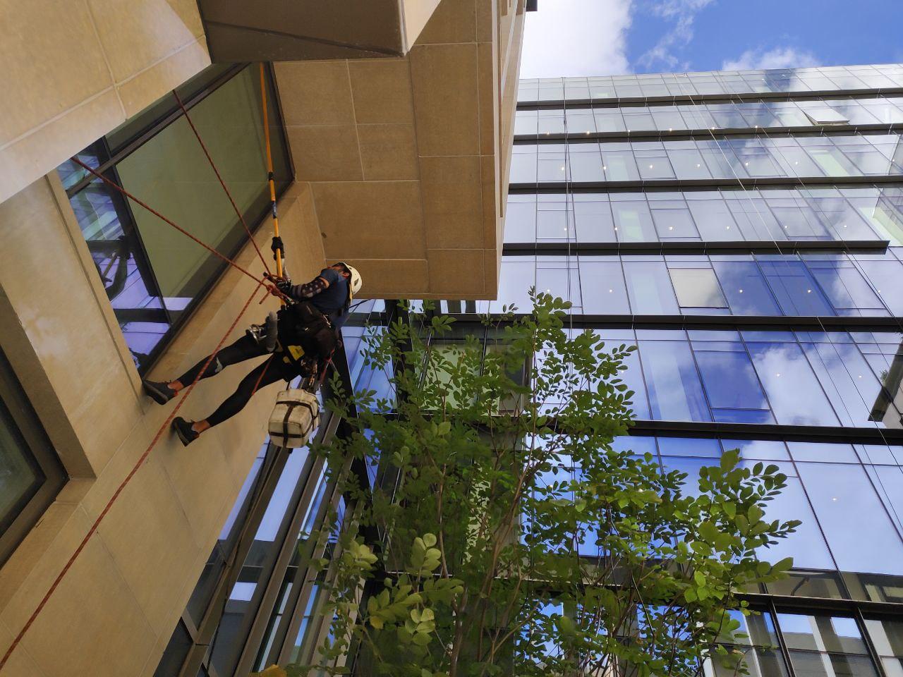 Professional windows cleaning 601 Washington Street