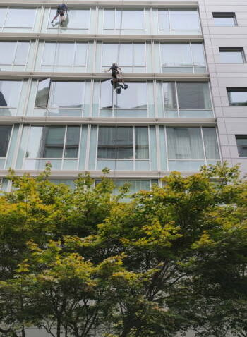 Windows cleaning in 311 w Broadway